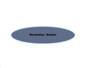 Revolution Microblading Nadeln